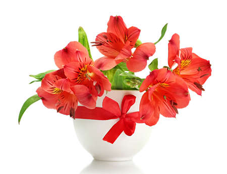 alstroemeria red flowers in vase isolated on white Stock Photo - 14707027