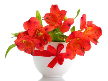 alstroemeria red flowers in vase isolated on white Stock Photo - 14706933