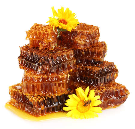 sweet honeycomb with honey, bee on flowers, isolated on white photo