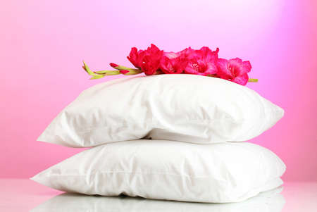 gladiolus: pillows and flower, on pink background Stock Photo