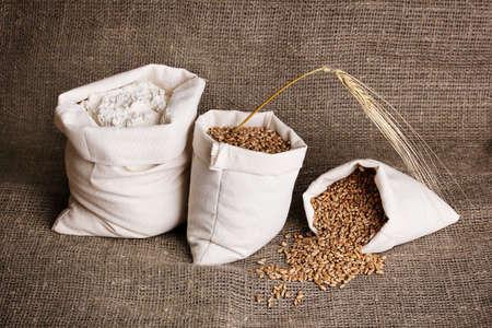 gunny bag: Flour and wheat grain on sackcloth