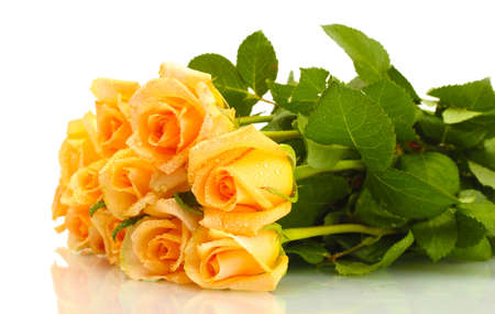 rosas naranjas: hermoso ramo de rosas aisladas en blanco Foto de archivo
