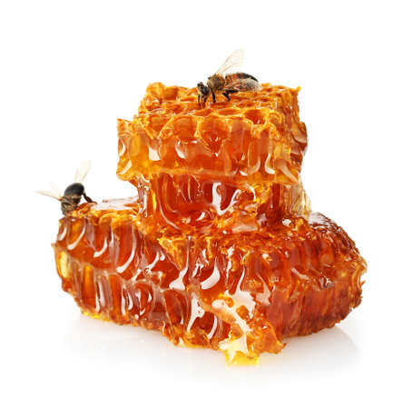 sweet honeycomb with honey and bee, isolated on white photo