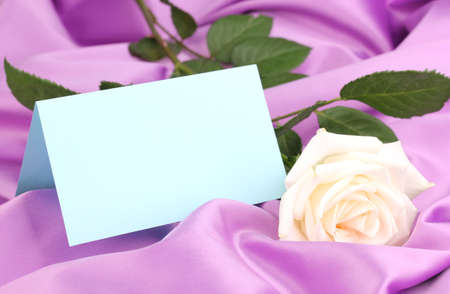 Beautiful rose on lilac cloth photo