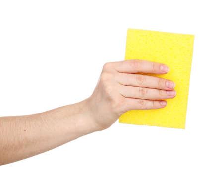 celulosa: Celulosa esponja aislado en blanco