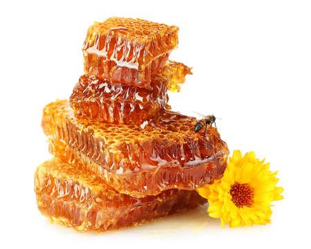 abejas panal: dulce panal con miel, abeja y flor, aislado en blanco Foto de archivo