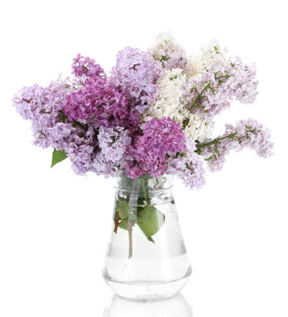 beautiful lilac flowers in glass jar isolated on white photo