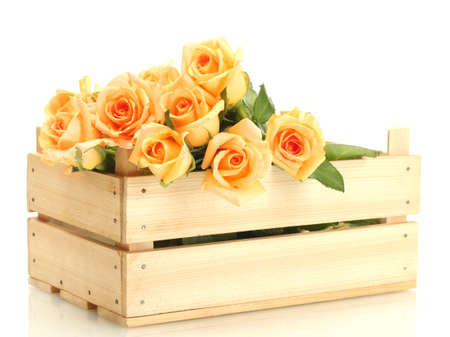 beautiful bouquet of roses in wooden box isolated on white photo