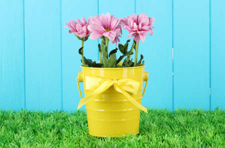 beautiful bouquet of chrysanthemums in a bright colorful bucket on blue fence  background photo