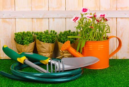 garden cornflowers: Gardening tools on wooden background