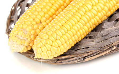 Fresh corn cobs on wicker mat isolated on white photo