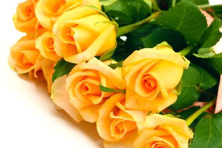 rosas amarillas: hermoso ramo de rosas aisladas en blanco Foto de archivo