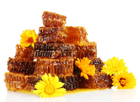 sweet honeycombs with honey and flowers, isolated on white photo