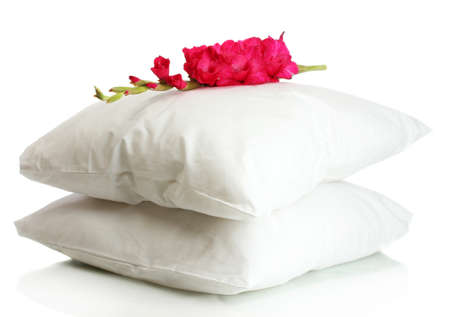 pillow: pillows and flower, isolated on white