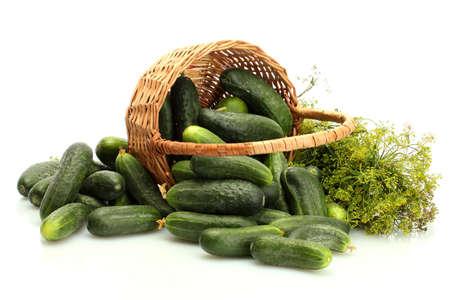 verse komkommers, augurken en dille in mand geà ¯ soleerd op wit