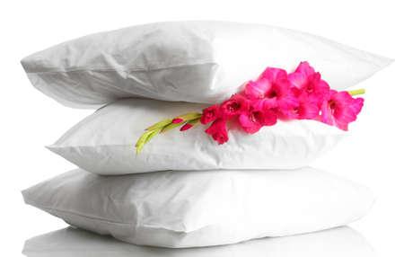Kussen Wit 15 : Kussens en bloem geïsoleerd op wit royalty vrije foto plaatjes