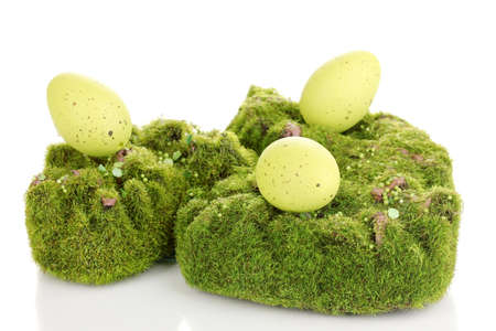 Green moss with eggs isolated on white photo