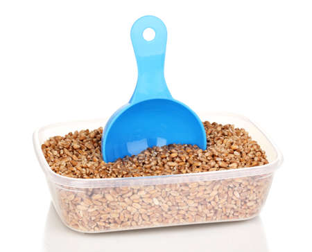 Measuring spoon and plastic container with grain isolated on white photo