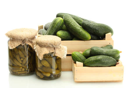 cuke: fresh cucumbers in boxes and pickles isolated on white