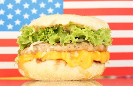 tasty sandwich, on american flag photo