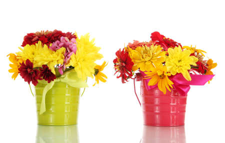 beautiful summer flowers in buckets, isolated on white photo