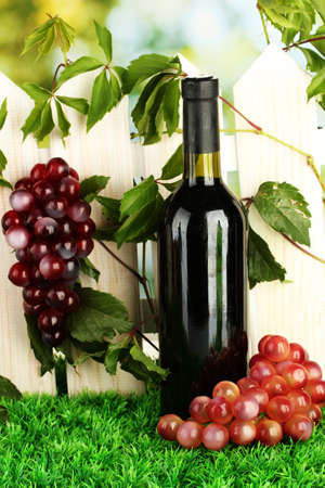 a bottle of wine on the fence background close-up Stock Photo - 15282990