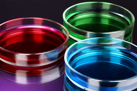 reagent: color liquid in petri dishes on violet background