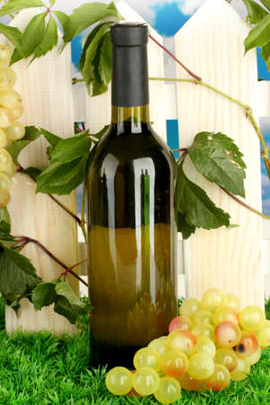 a bottle of wine on the fence background close-up Stock Photo - 15242496