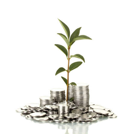 investing: plant growing out of silver coins isolated on white Stock Photo