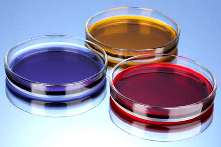 color liquid in petri dishes on blue background photo