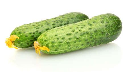Fresh cucumbers isolated on white  Stock Photo - 15383077