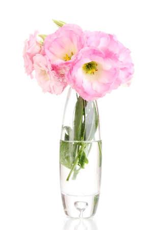 bouquet of eustoma flowers in vase, isolated on white photo