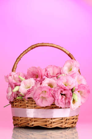 bouquet of eustoma flowers in basket, on pink background photo