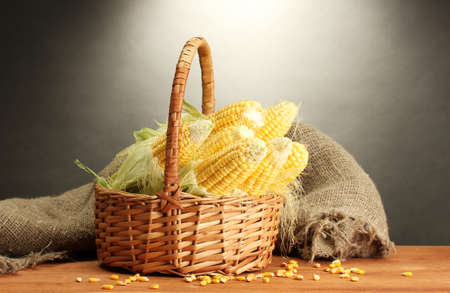 fresh corn in basket, on wooden table, on grey background photo