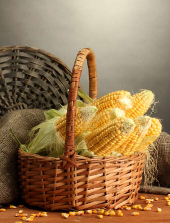fresh corn in box, on wooden table, on grey background photo