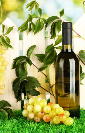 a bottle of wine on the fence background close-up Stock Photo - 15520593