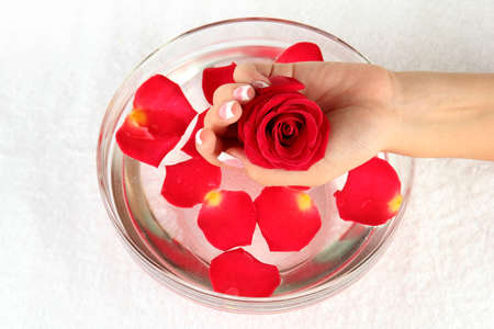 water treatment for female hands, close-up Stock Photo - 15456312