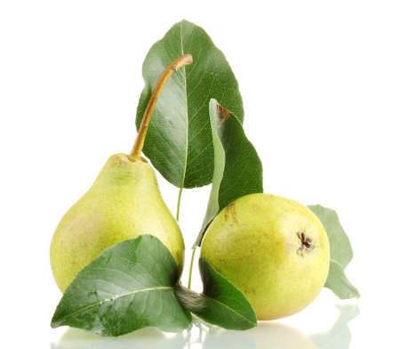 Juicy flavorful pears isolated on white photo