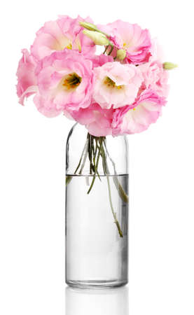 bouquet of eustoma flowers in bottle, isolated on white photo