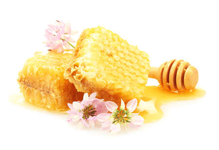 curative: golden honeycombs, wildflowers and wooden drizzler with honey isolated on white