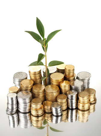 plant growing out of gold and silver  coins isolated on white background close-up Stock Photo - 15601131