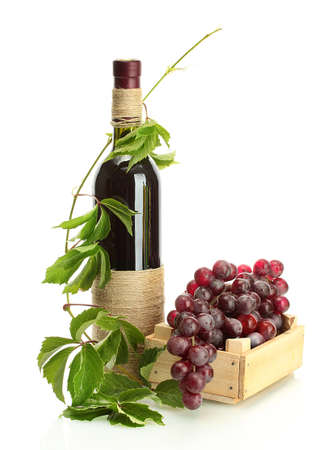 bottle of wine with grapes isolated on white Stock Photo - 15616446