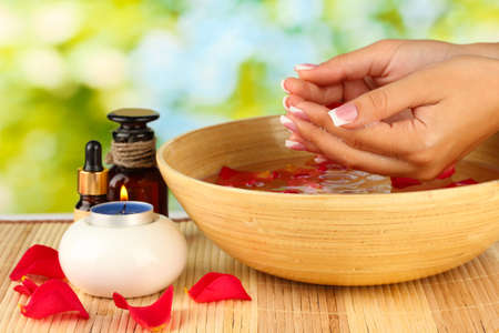 spa treatments for female hands,  on green background Stock Photo - 15642257