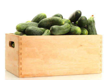 cuke: fresh cucumbers in wooden box isolated on white