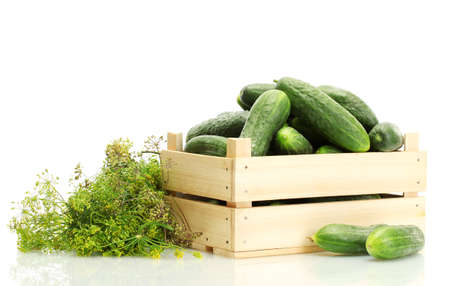 cuke: fresh cucumbers in wooden box and dill  isolated on white
