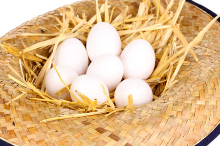 eco-friendly eggs in hat close-up Stock Photo - 15836128