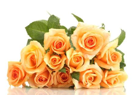 白で隔離されるバラの美しい花束