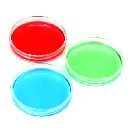 color liquid in petri dishes isolated on white photo