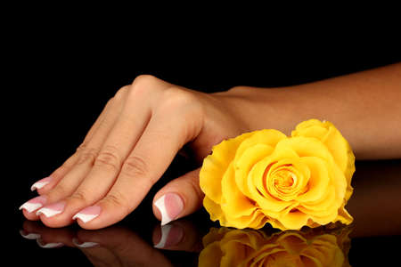 Yellow rose with woman's hand on black background photo