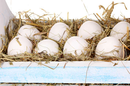 eco-friendly eggs in wooden box close-up Stock Photo - 15773285